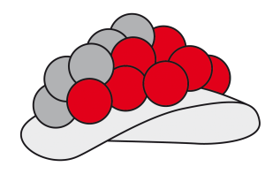 Bollenhut3