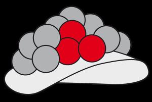 Bollenhut5